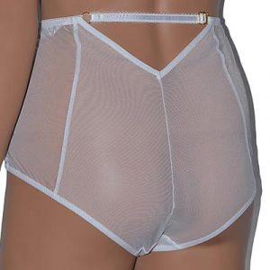 high waist sheer mesh panties